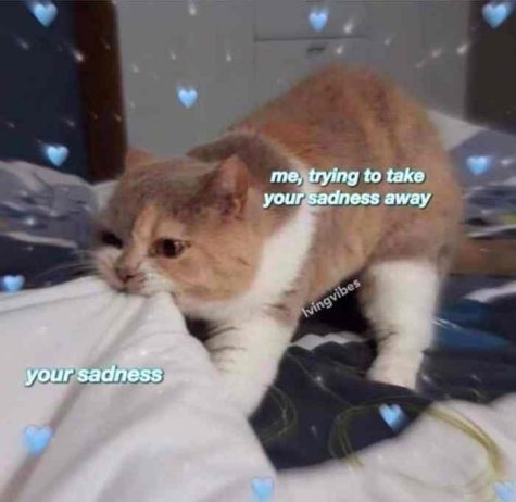 "Big Meme Moods: ""Me, Trying to Take Your Sadness Away"""